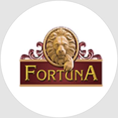 Веб-студия FORTUNA