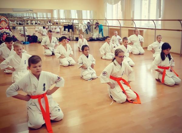 Киокусинкай каратэ - спортивный клуб Белый тигр