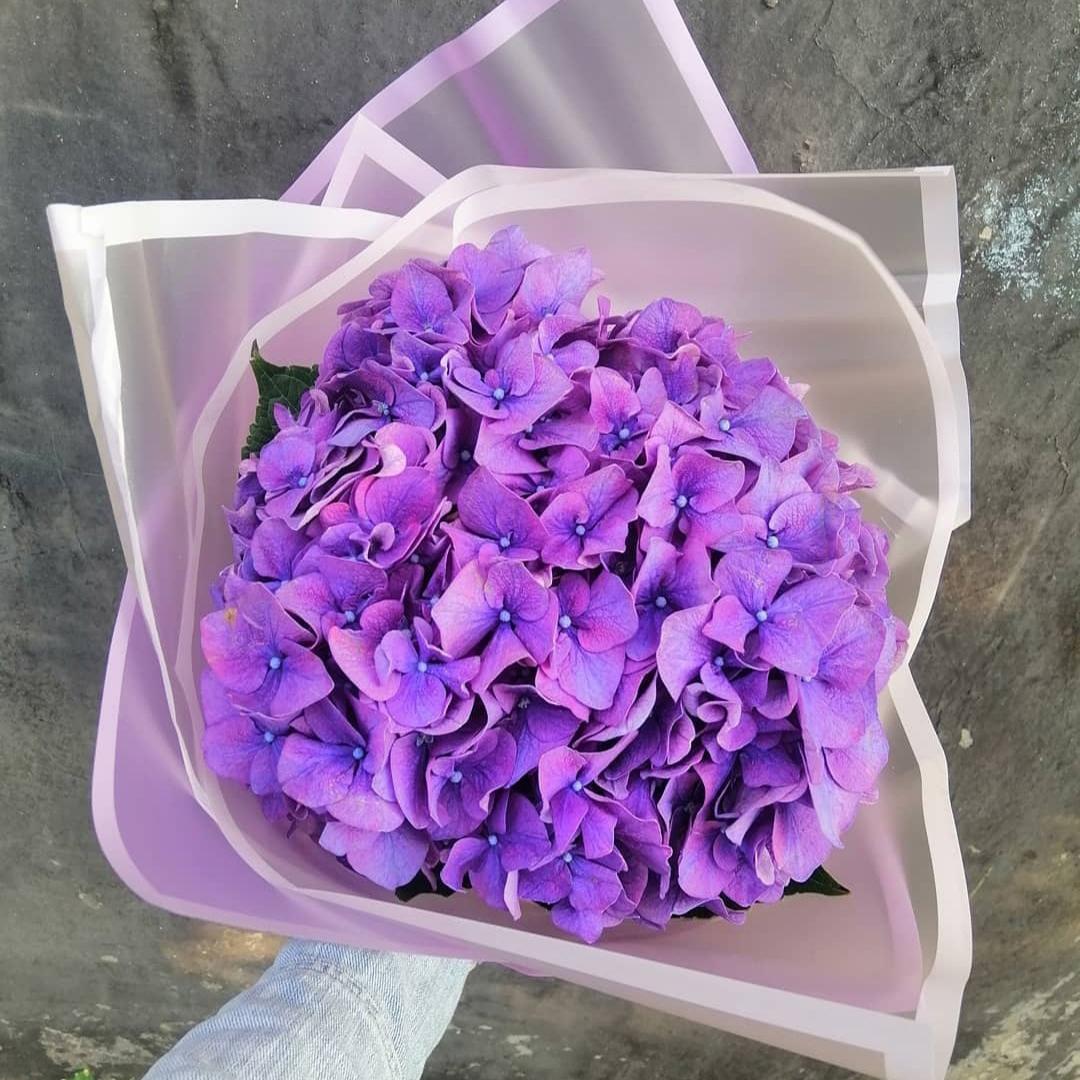 1 фиолетовая гортензия в крафте