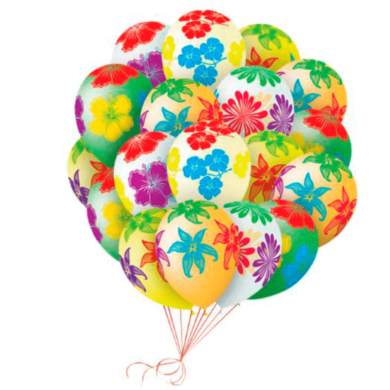 25 шаров  с цветами