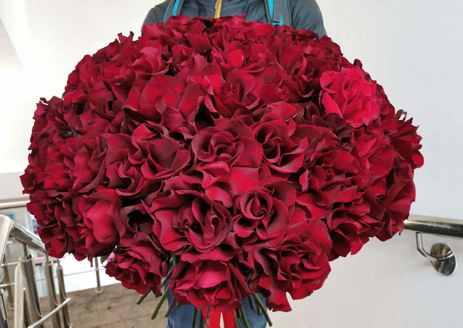 Букет-гигант из 55 роз сорта Софи Лорен