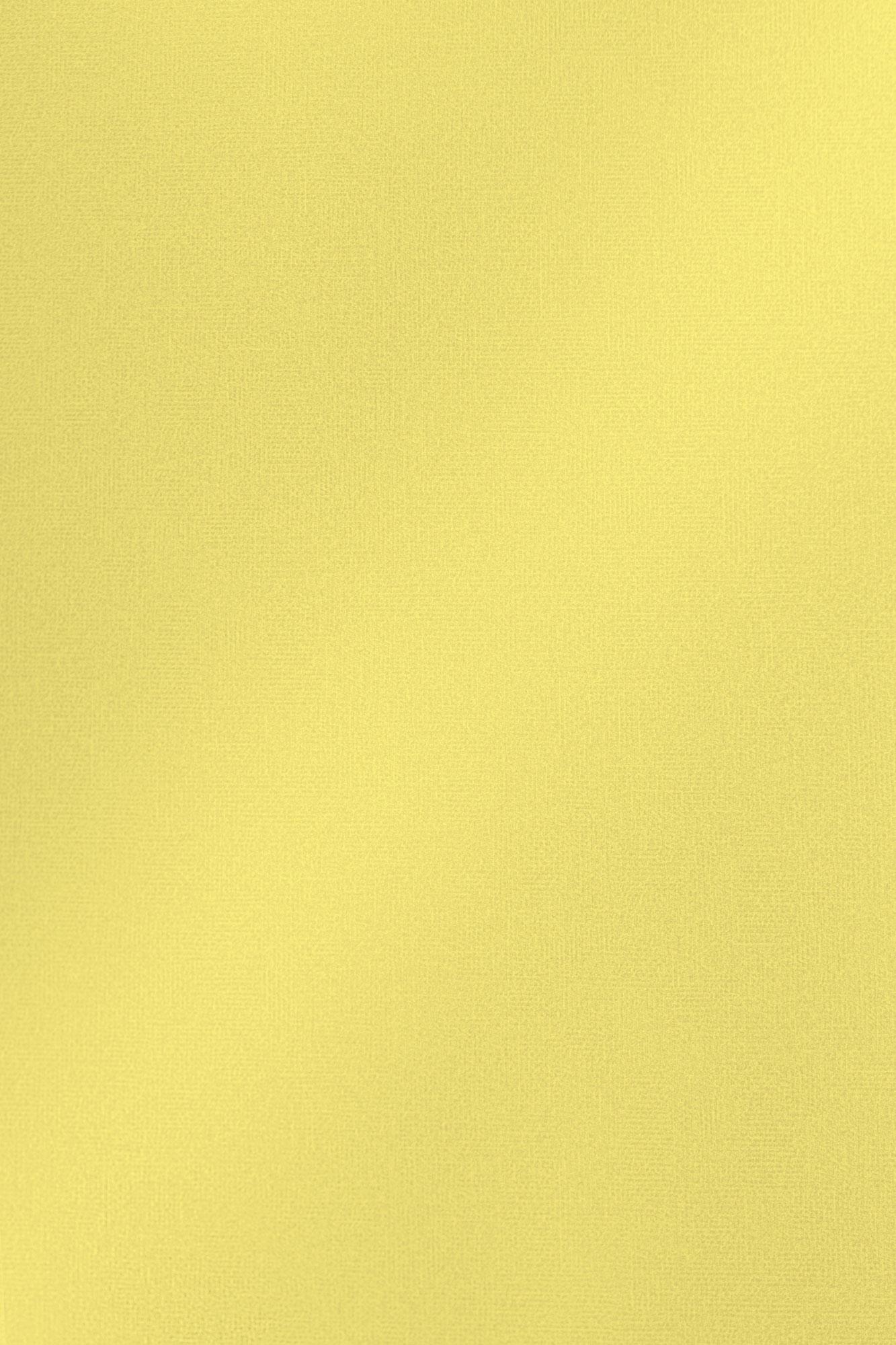 DT0010 HG Жёлтый твид