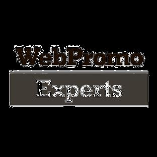 Логотип WebPromoExperts
