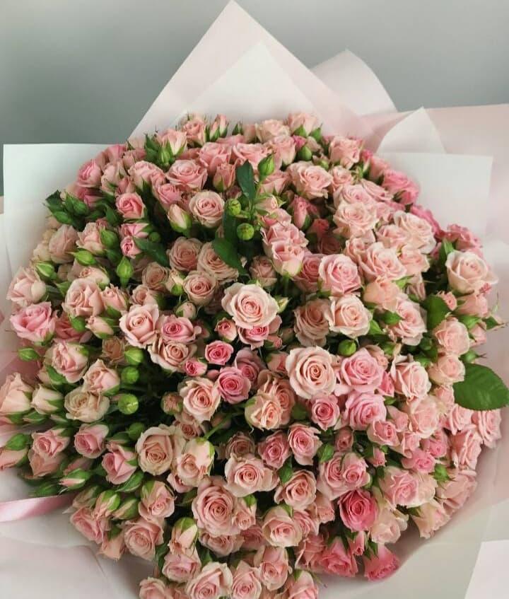65 нежных кустовых роз