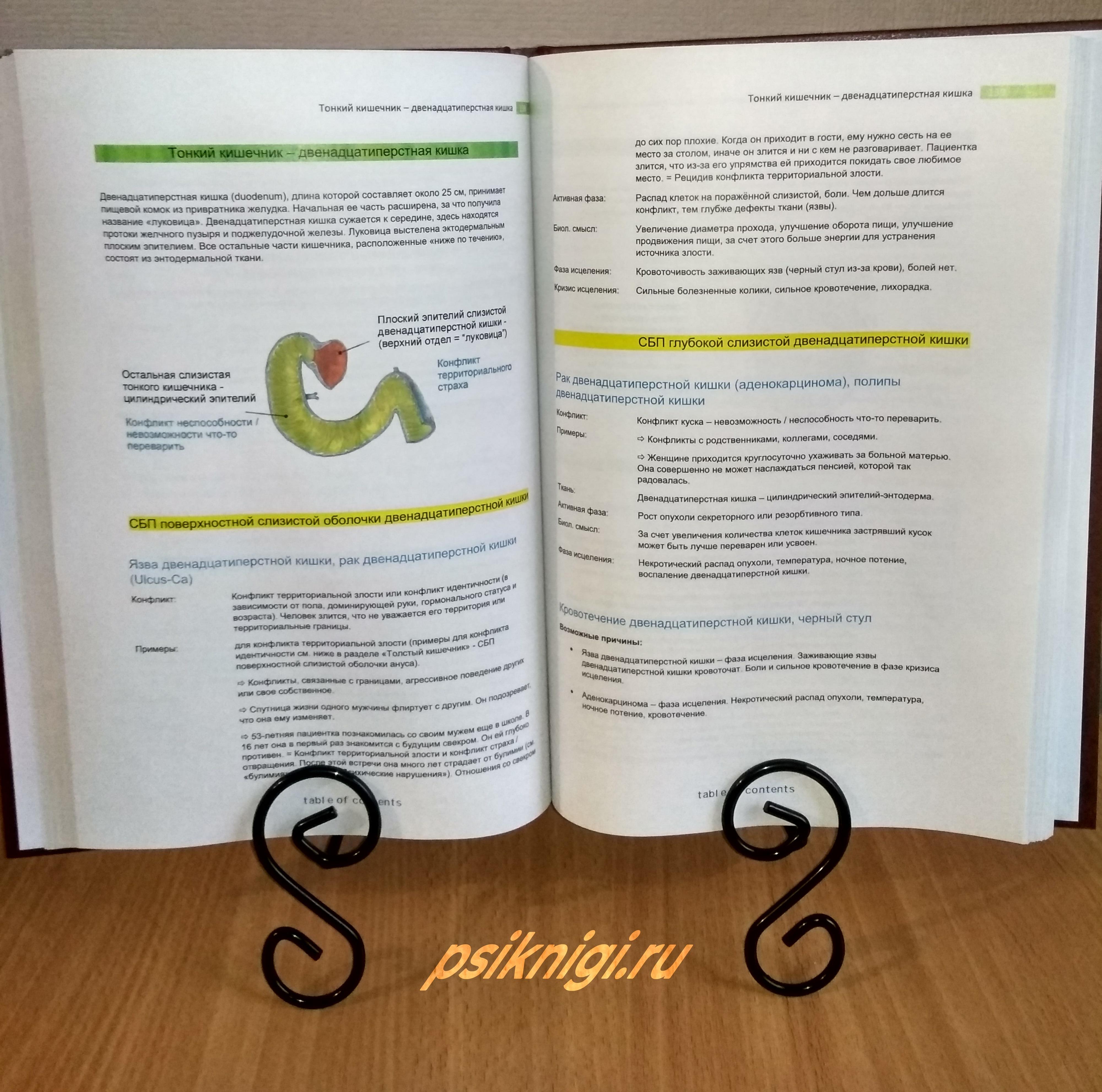 новая германская медицина справочник, германскую новую медицину доктора хамера, германская новая медицина хаммер книга купить