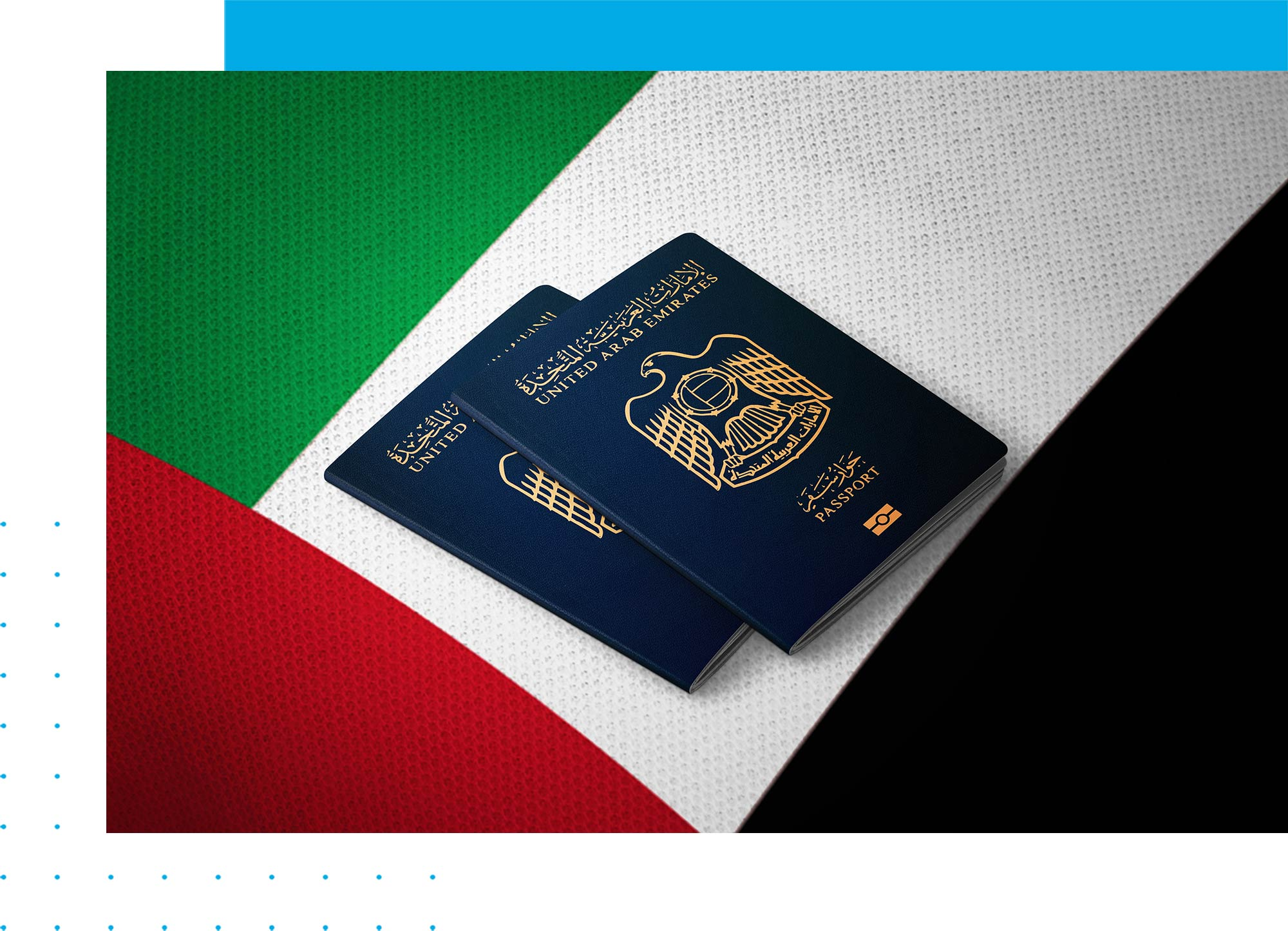 Emirates ID in UAE – All About the Document: opr.ae