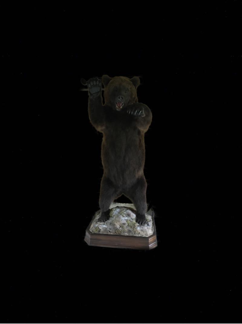 чучело медведя,купить чучело медведя,чучело медведя в полный рост