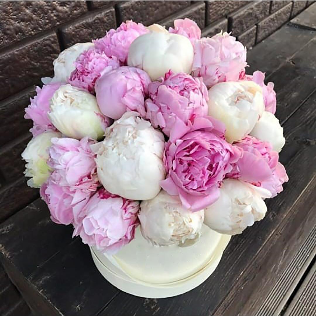 Белые и розовые пионы микс в коробке в руках