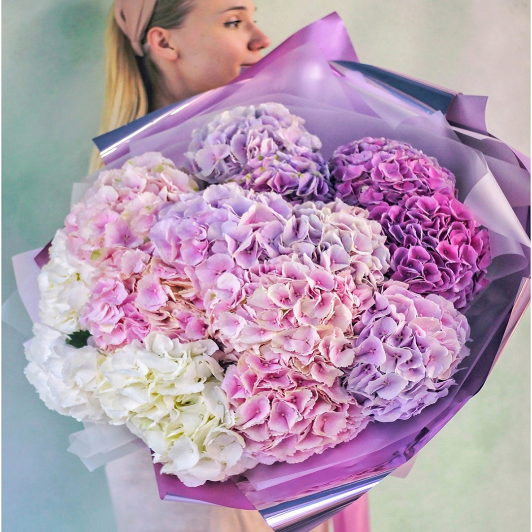 Микс из белых, розовых, лавандовых и фиолетовых гортензий в руках