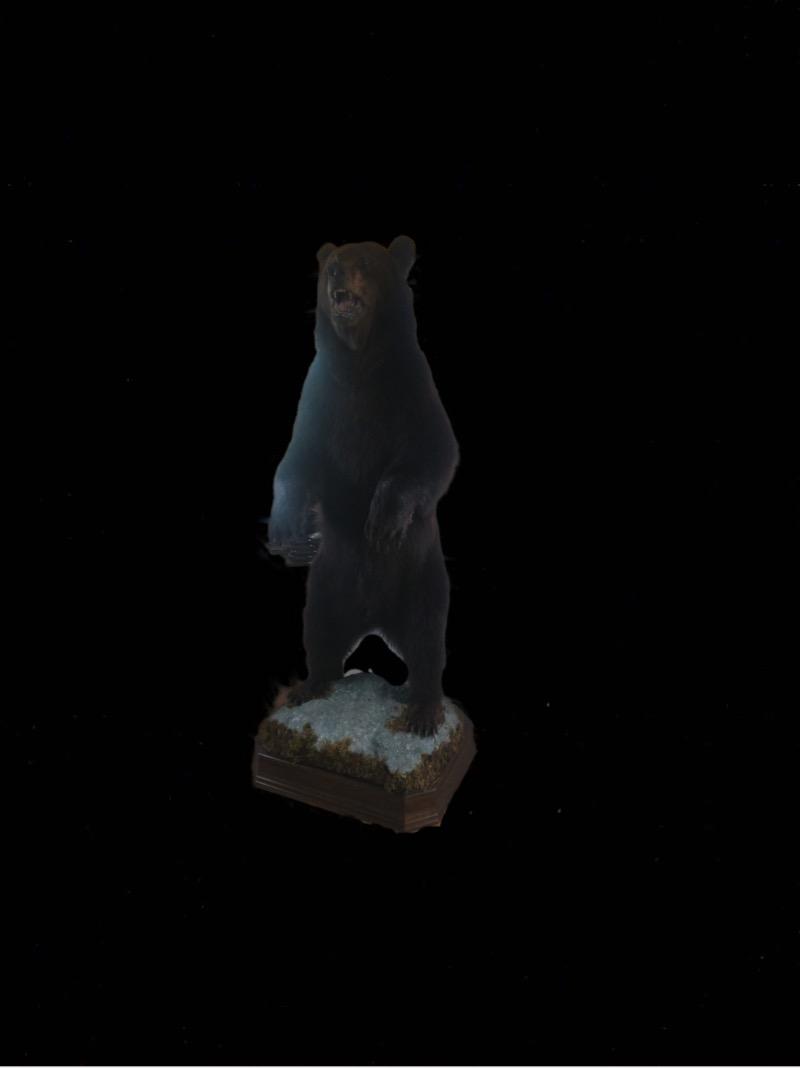 Сделать чучело медведя,заказать изготовление чучела медведя
