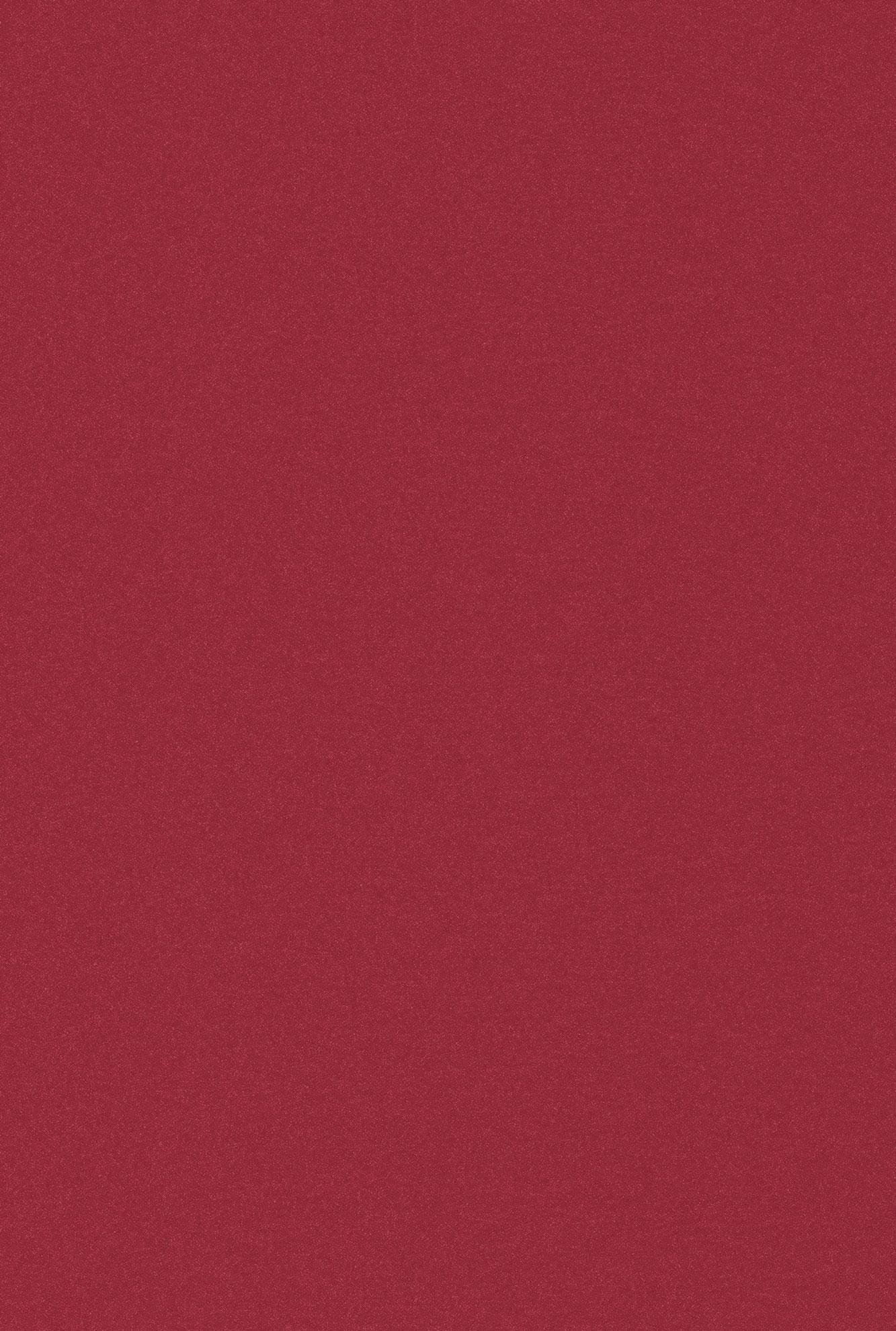 4006 HG Красный