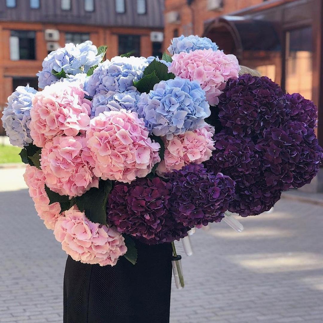 Микс голубых, розовых и фиолетовых гортензий в крафте