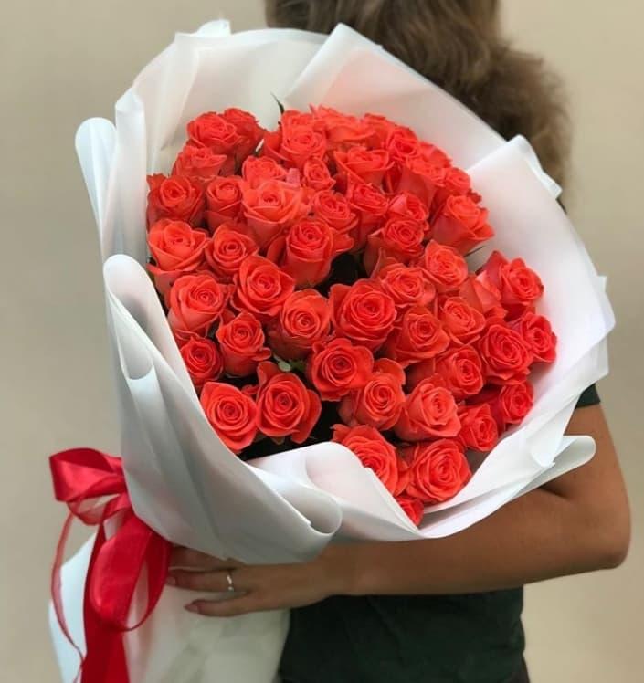 51 роза сорта Вау
