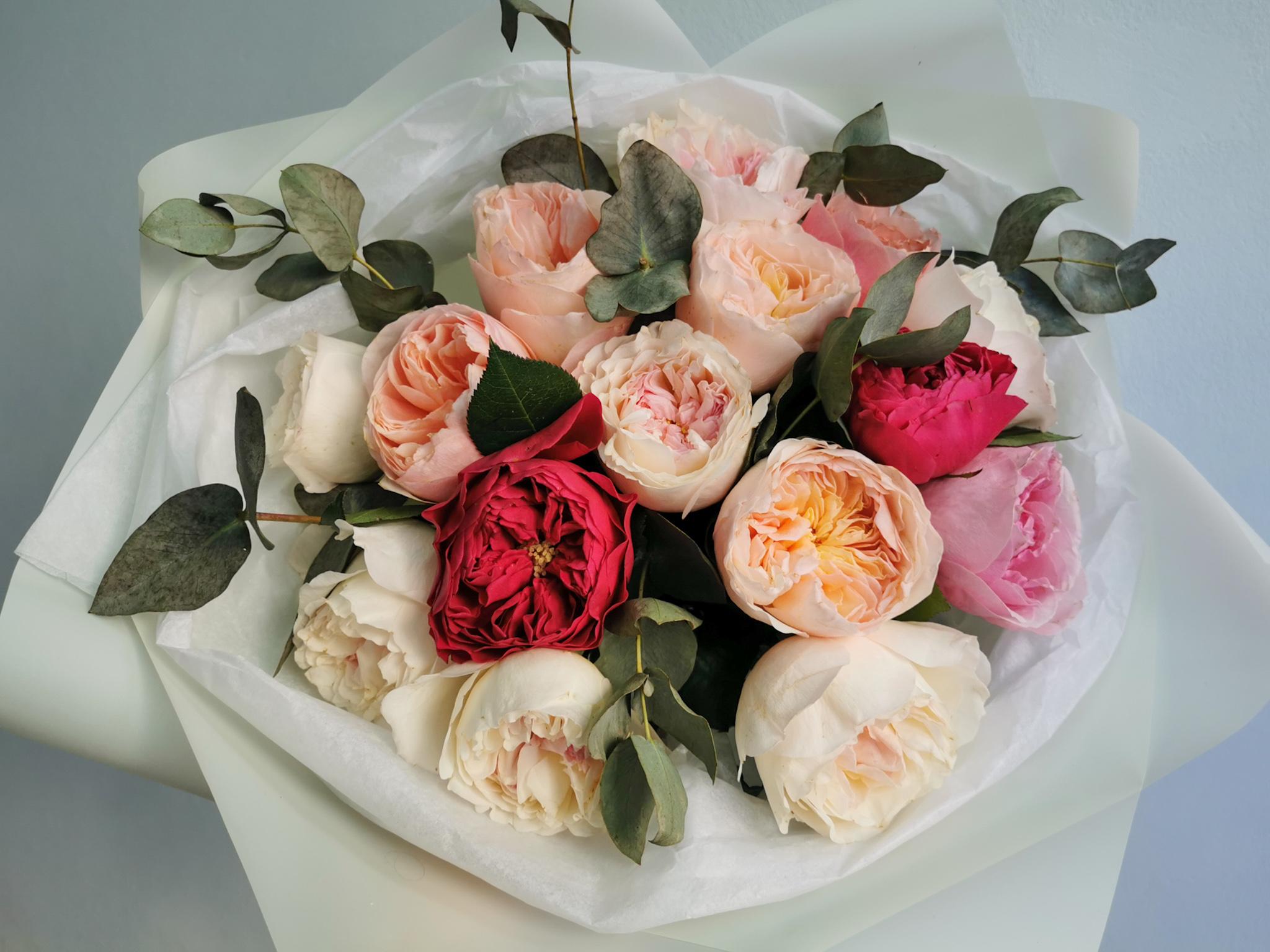 Одноголовые разноцветные пионовидные розы