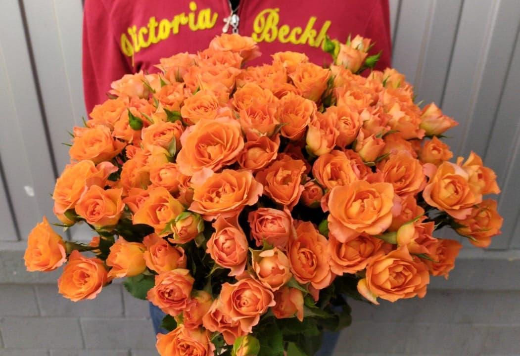 Кустовые оранжевые розы 19 веток