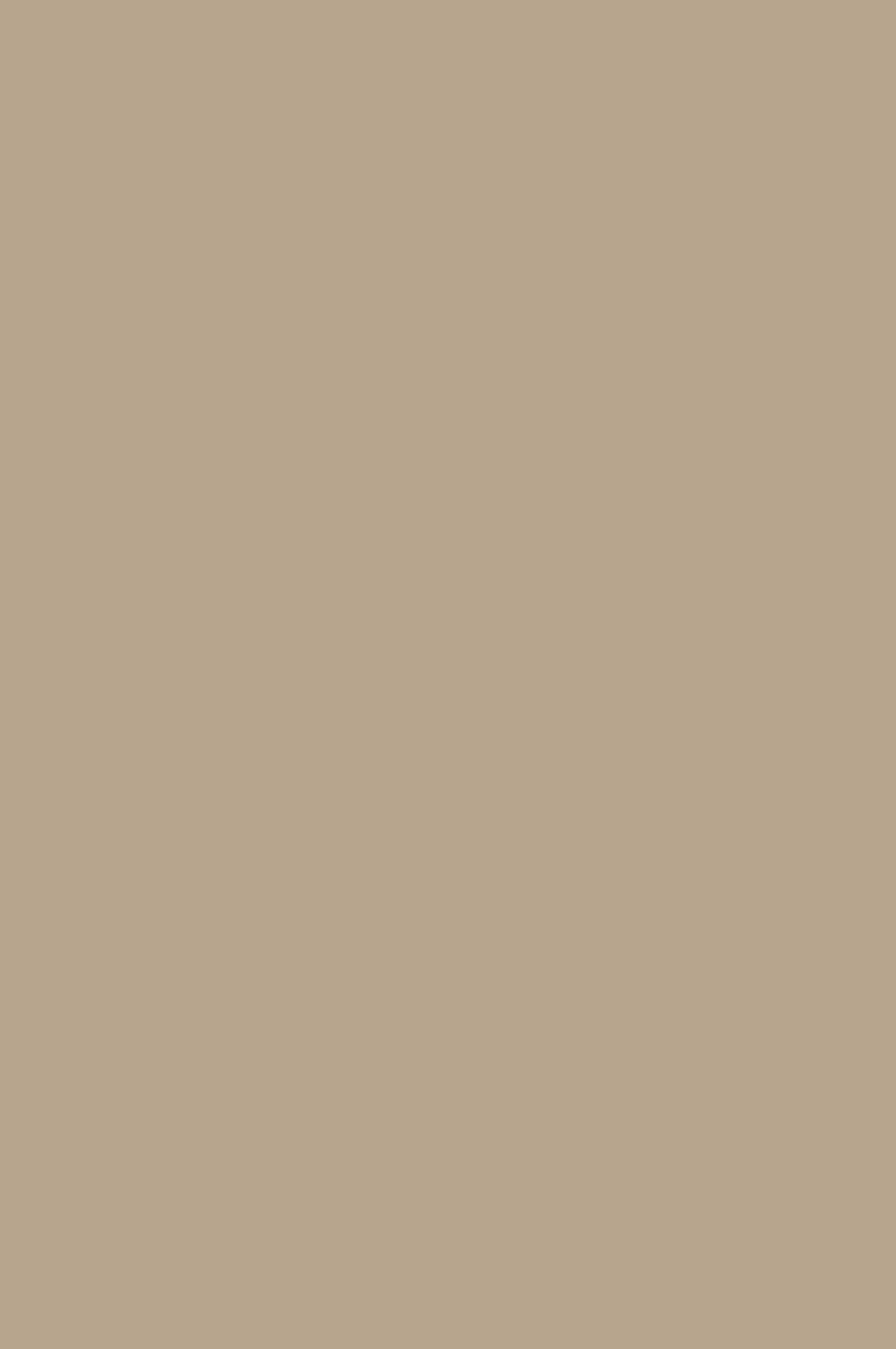 4147 HG Тёмно-кремовый