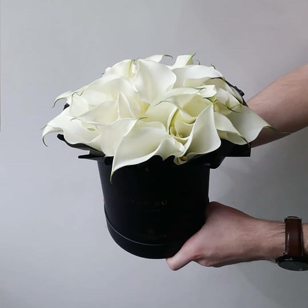 Белые каллы в коробке в руках