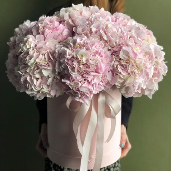 Розовые гортензии в коробке в руках