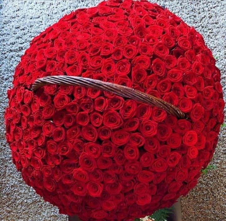 301 роза Ред Наоми в корзине