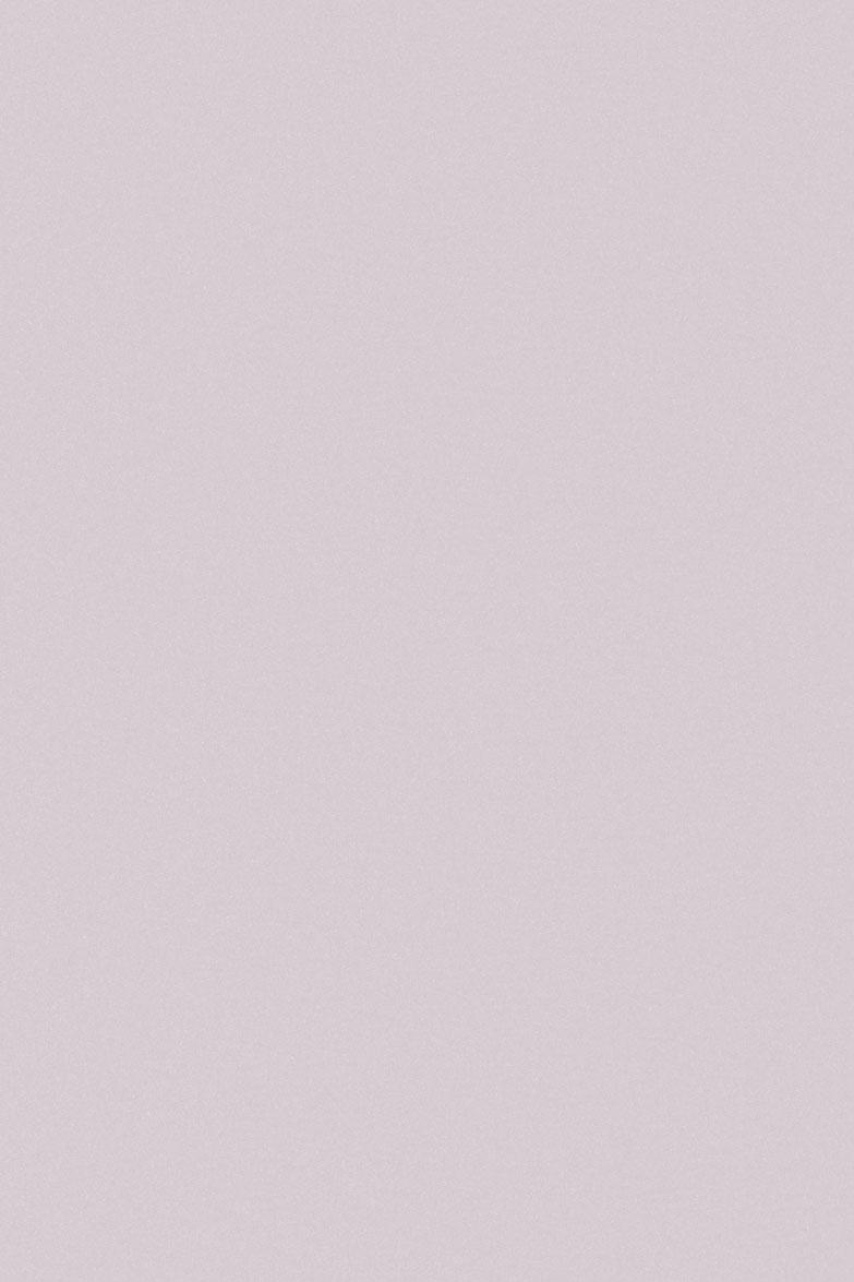 4007 HG Бледно-розовый