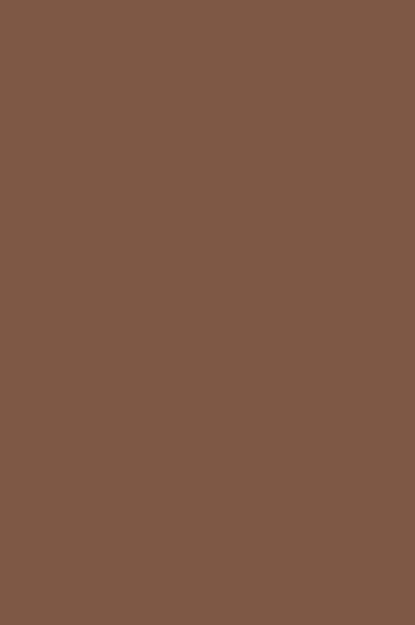 Cinnamon (Корица)