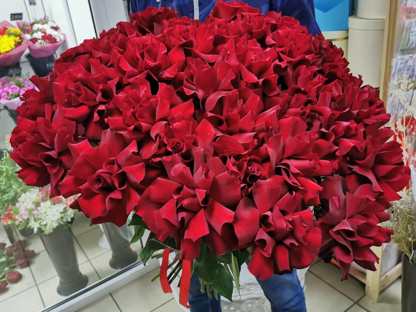 Яркий букет из 35 роз Софи Лорен