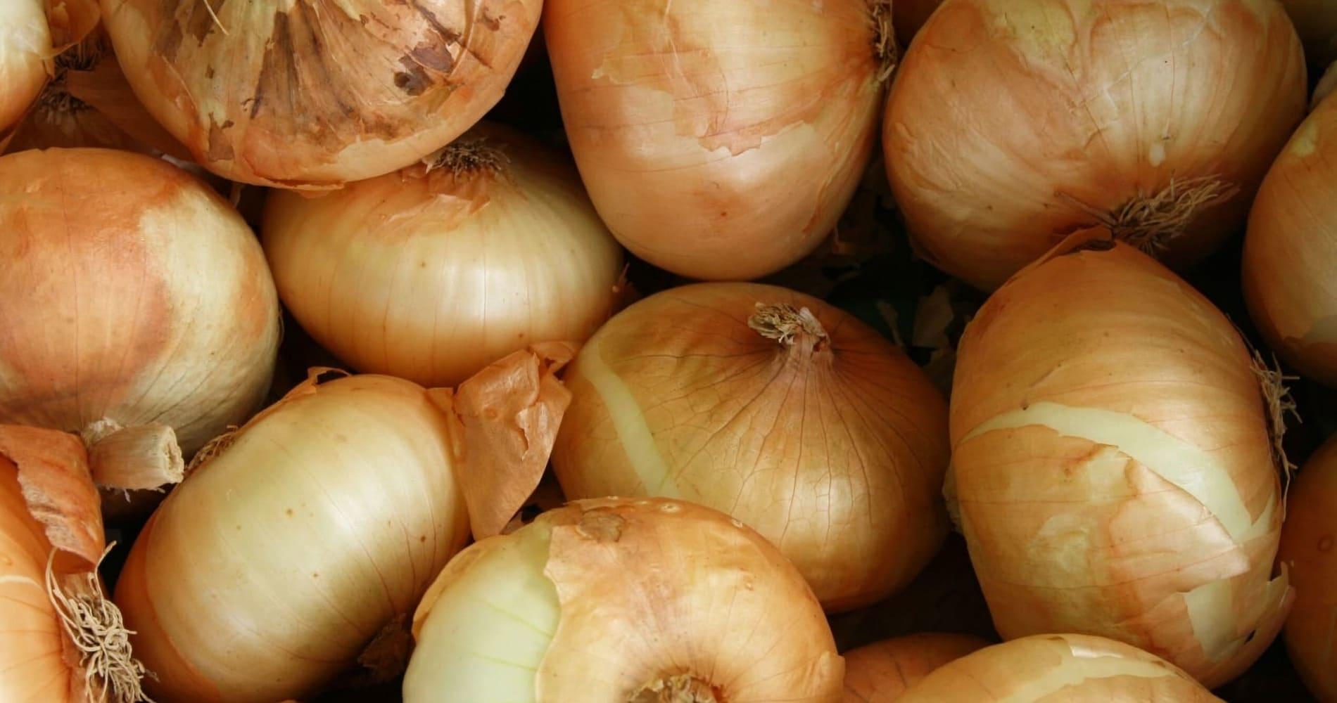биопрепараты для растениеводства, удобрения, стимуляторы роста, средства защиты растений