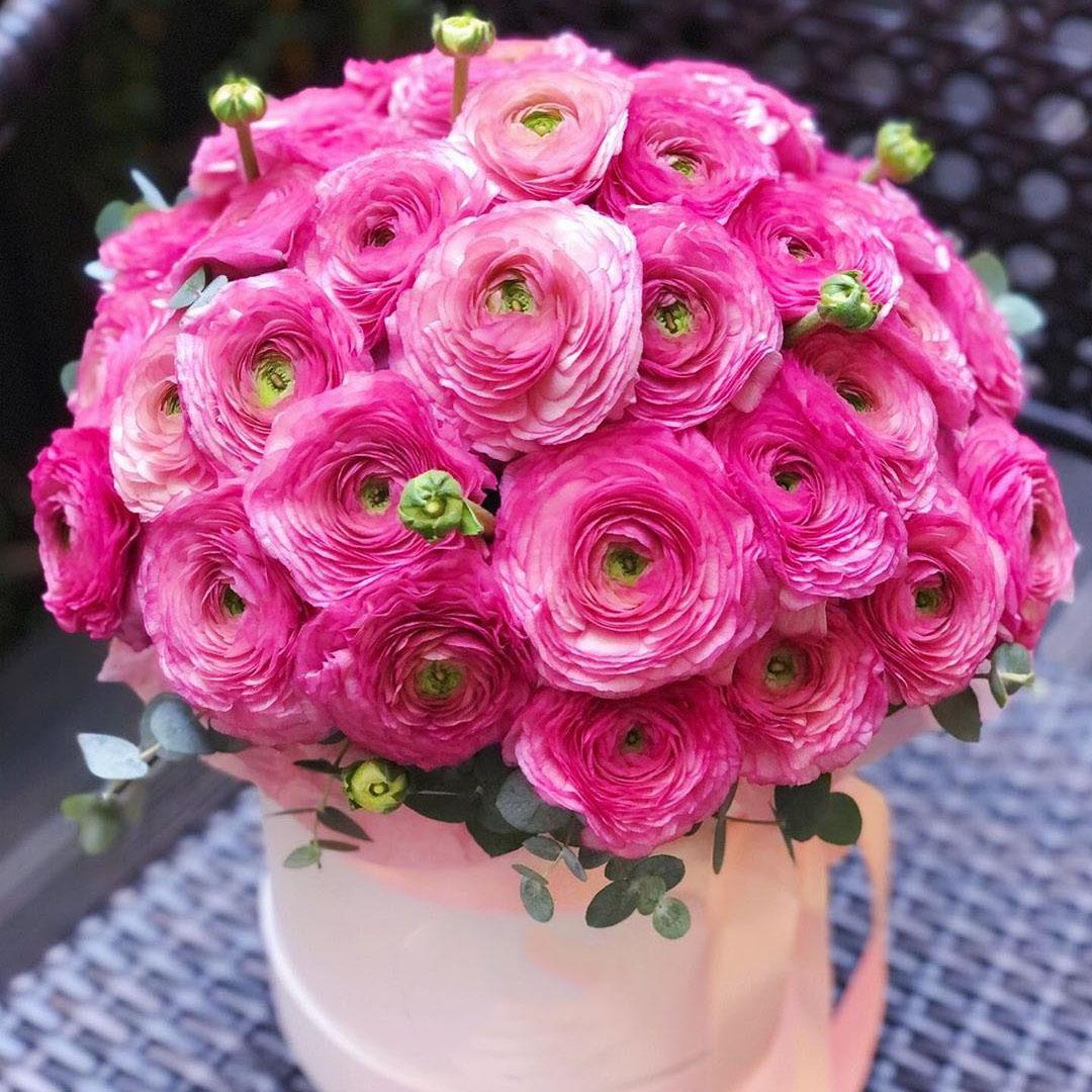 Розовые ранункулюсы в шляпной коробке в руках
