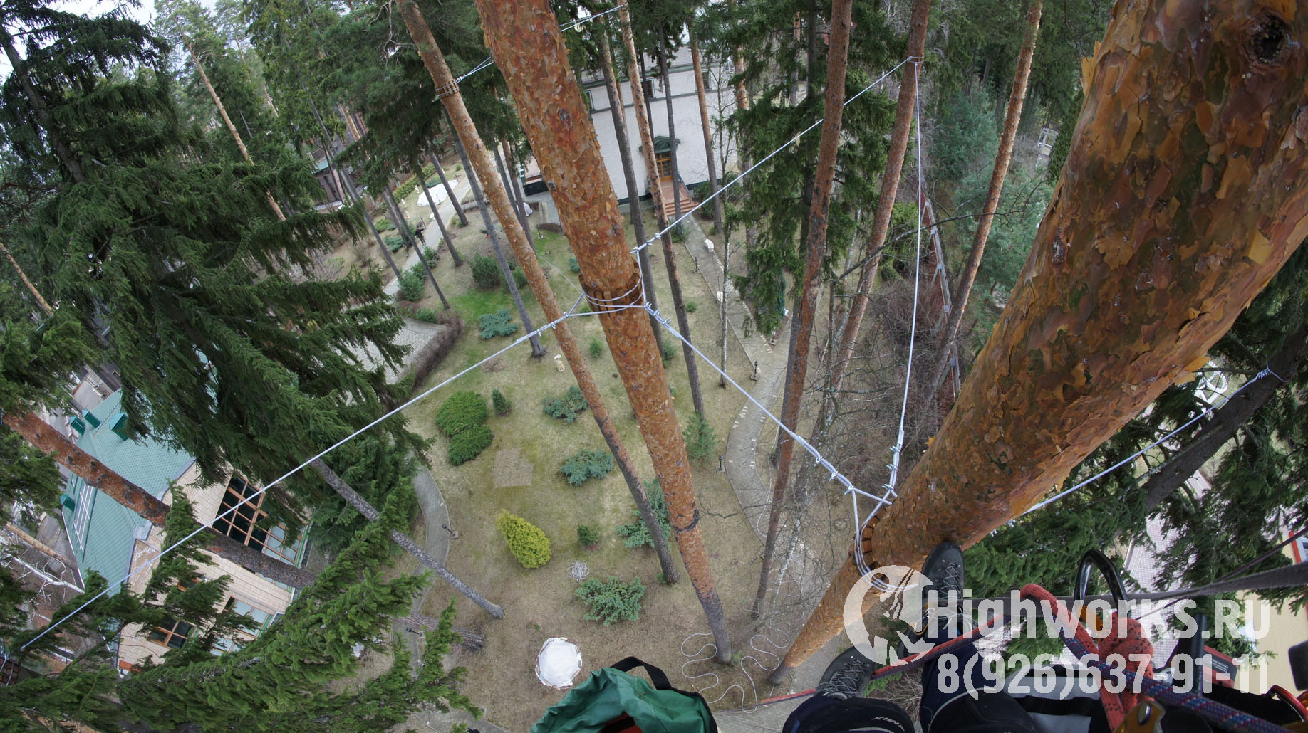 Укрепление и демонтаж деревьев промышленными альпинистами