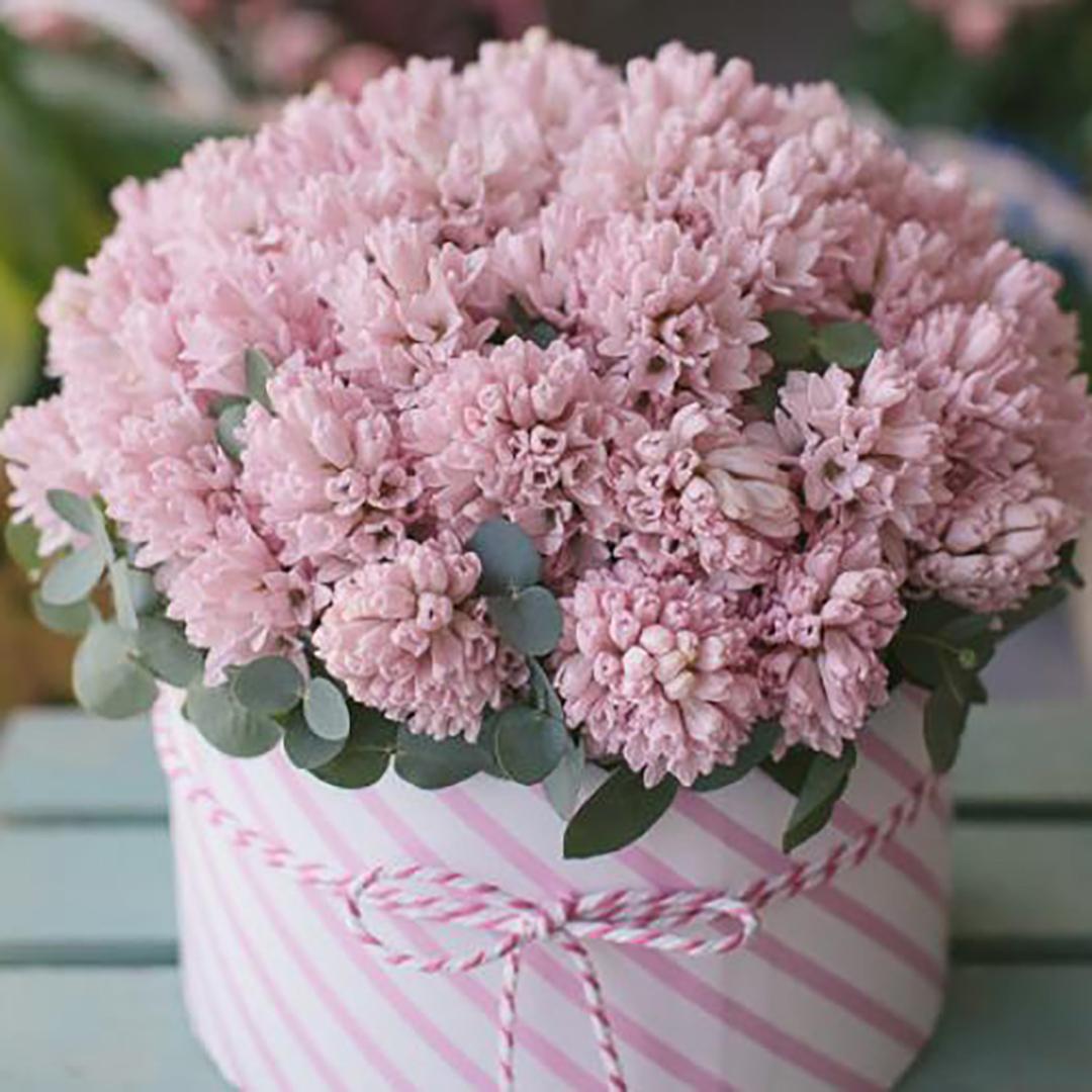 Розовые гиацинты в коробке в руках