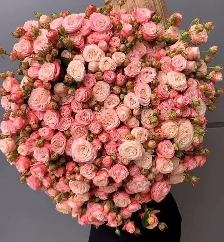 101 роза Леди Бомбастик