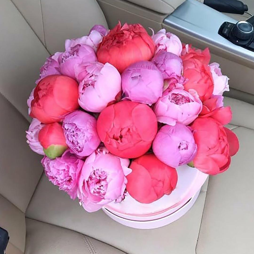 Розовые и коралловые пионы микс в коробке  в руках