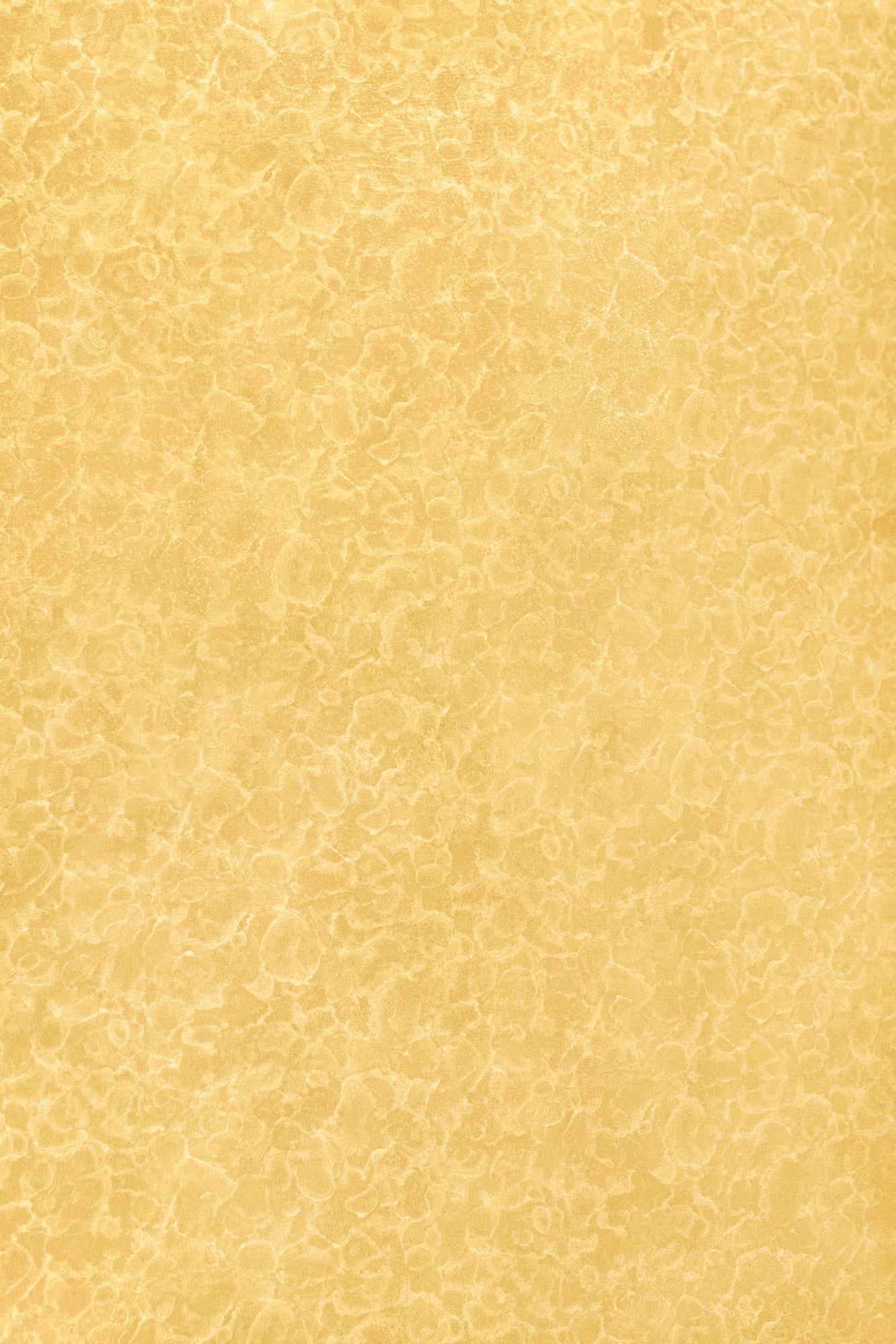 1705 HG Жёлтая фантазия