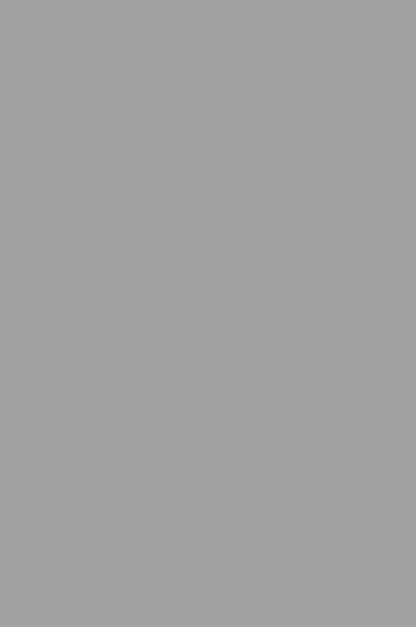 3012 HG Серый