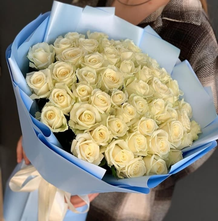 51 роза сорта Аваланж