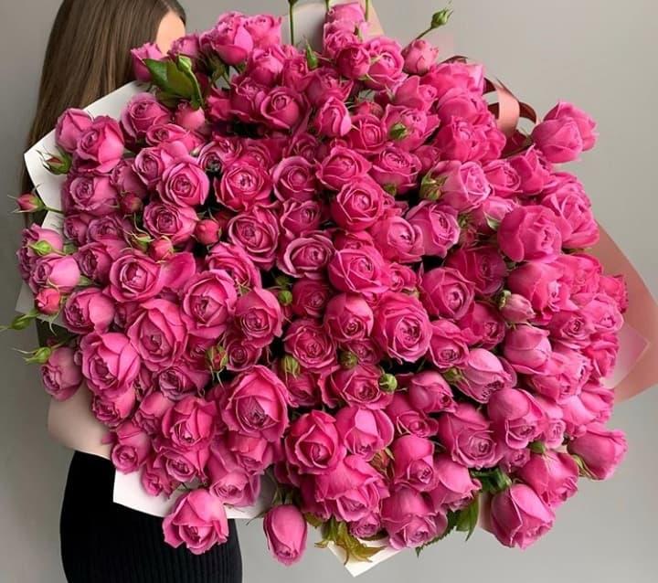 101 роза сорта Мисти Баблс