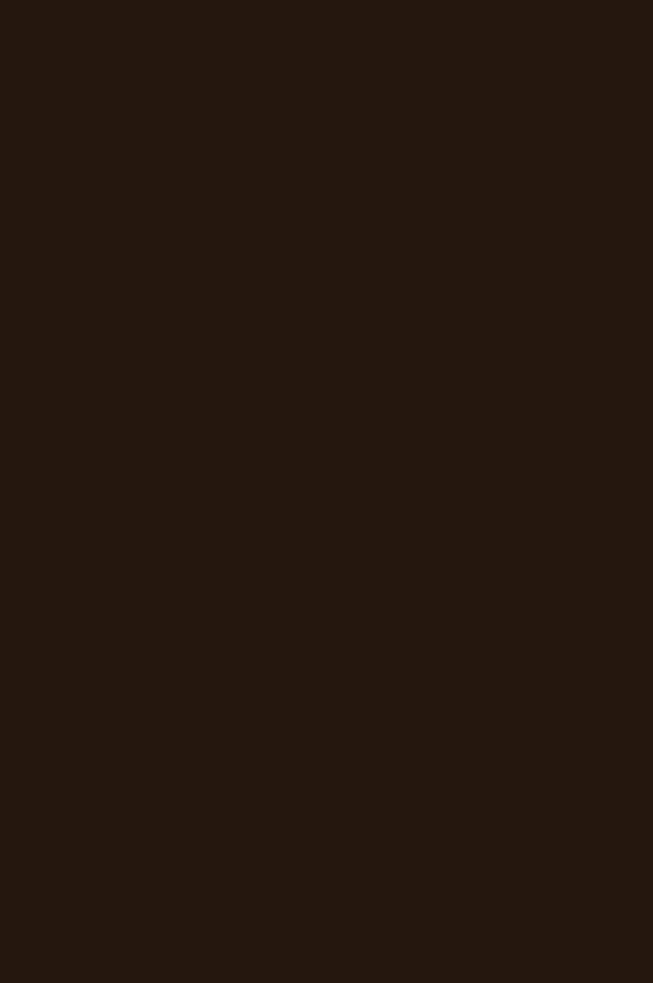 3013 HG Шоколад