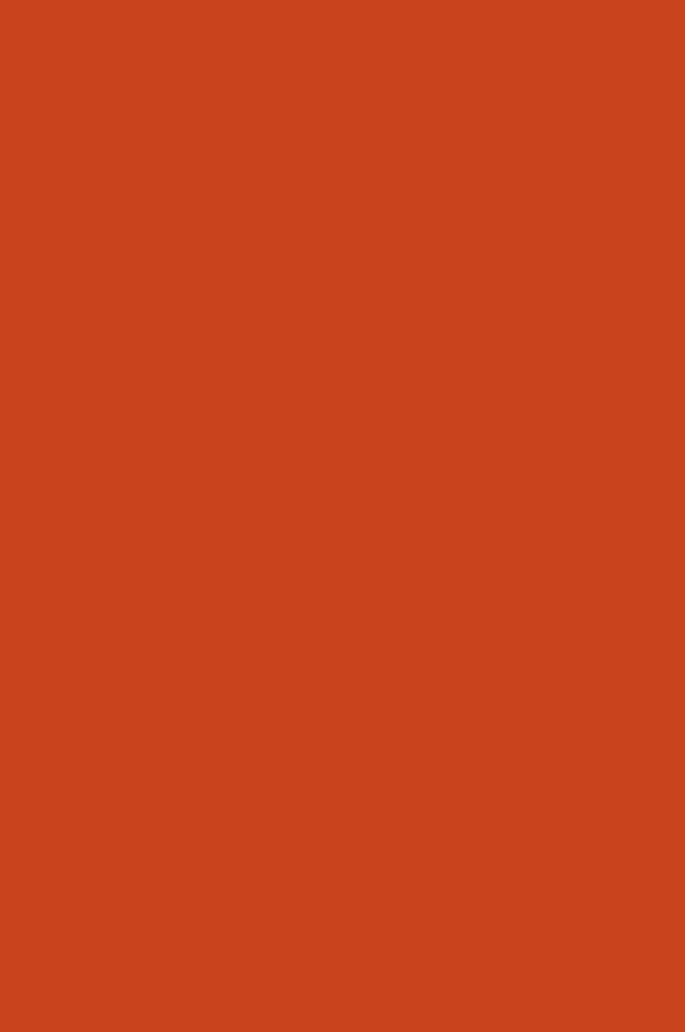 3026 HG Темно-оранжевый