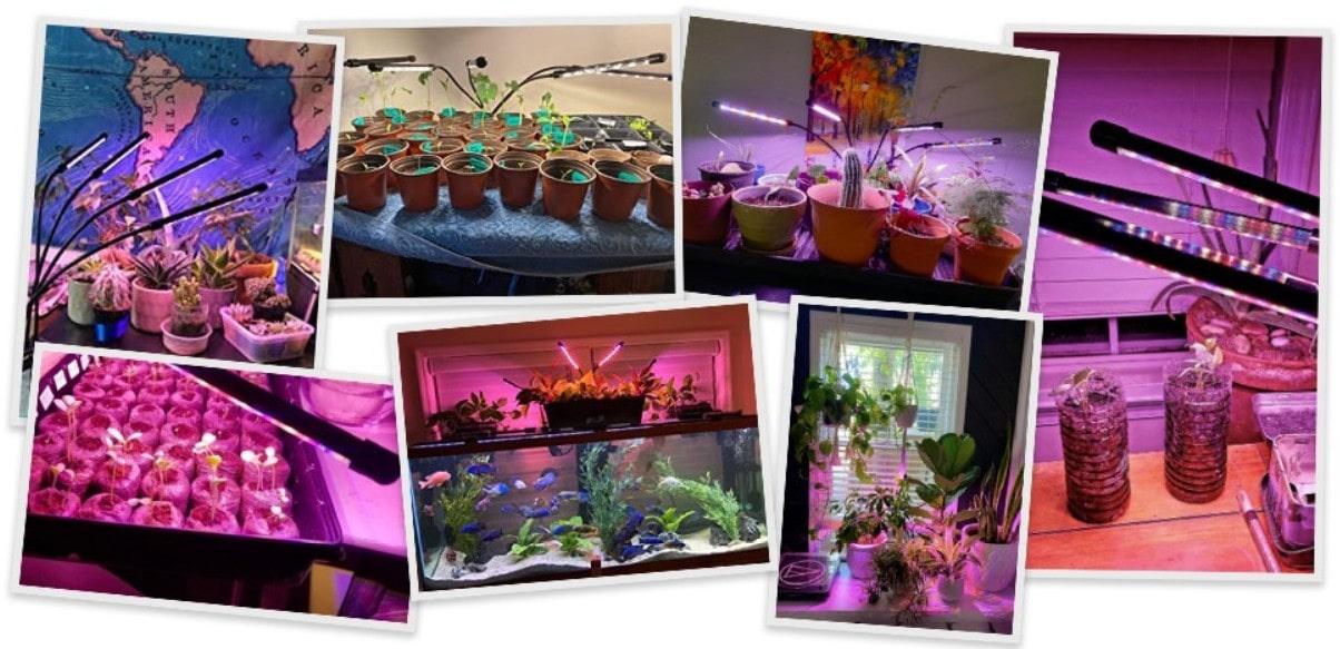 Лампа для выращивания растений Grow Light