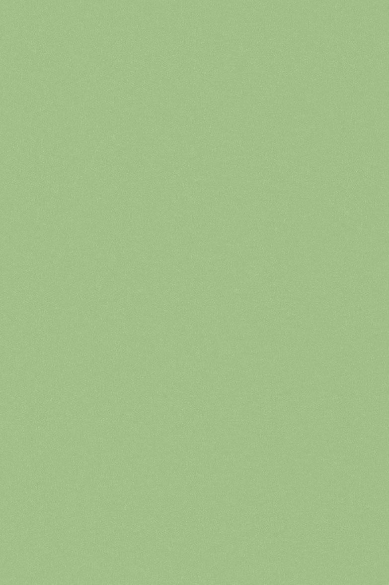 4009 HG Нежно-зеленый