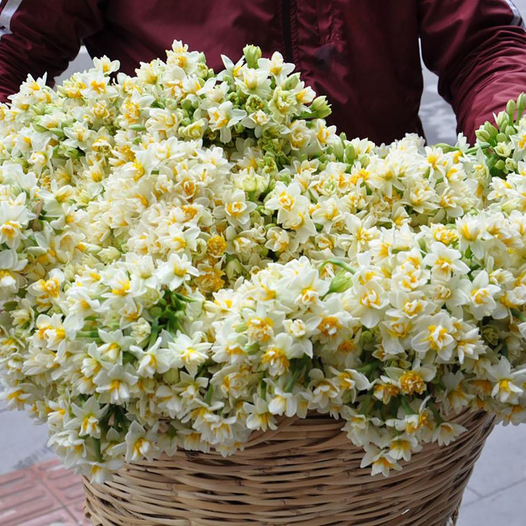 301 белый кустовой нарцисс в корзине в руках