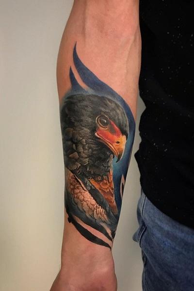 Цветная татуировка птицы , тату салон/студия в Новосибирске
