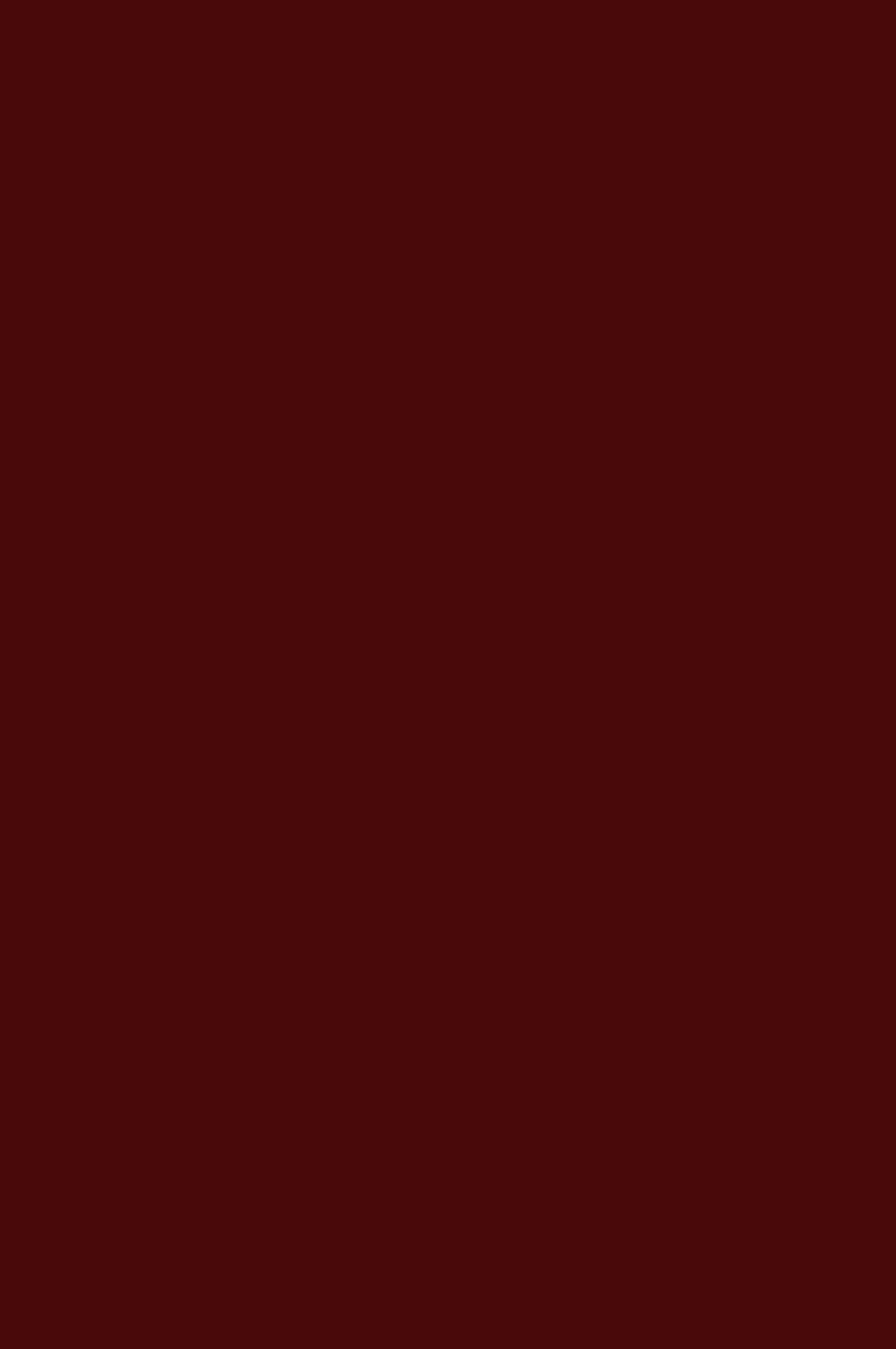 3016 HG Бордовый