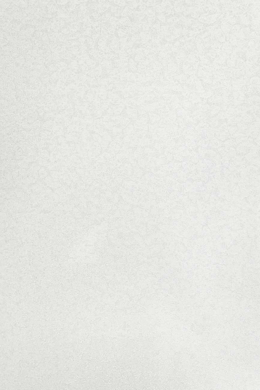 1110 HG Белые васильки